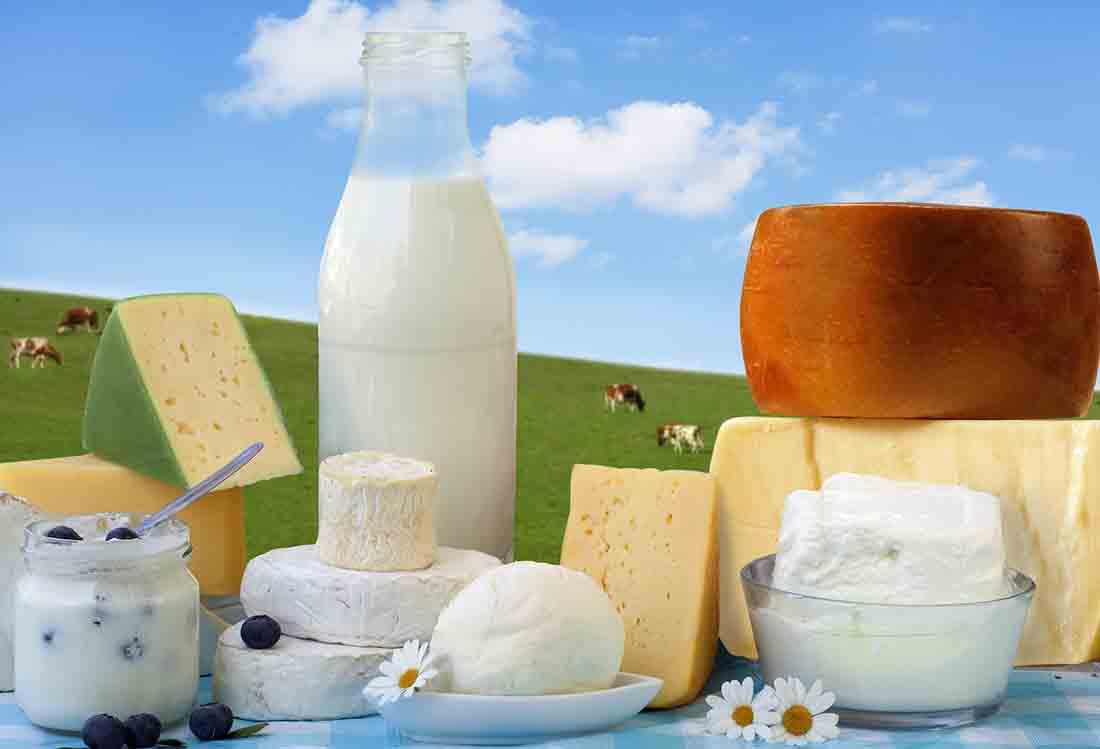 Various Dairy Foods With a Cow Field in the Background.