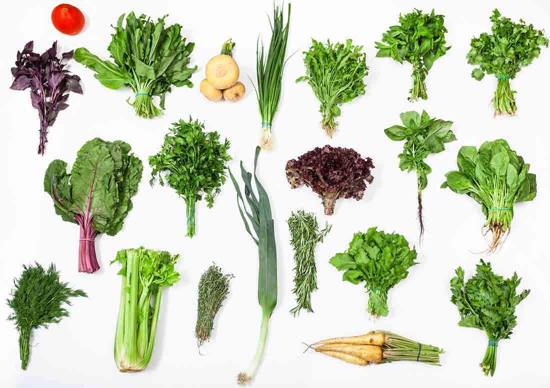 Various Healthy Green Vegetables.