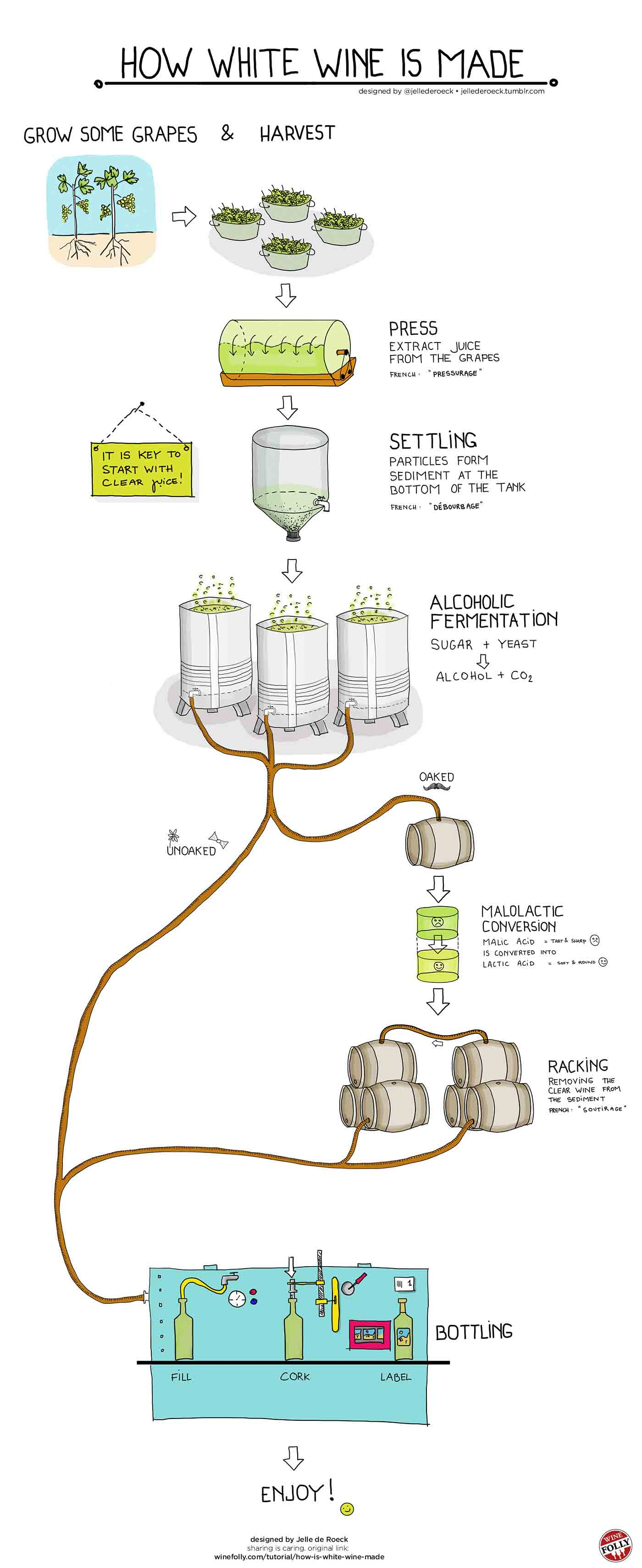 An Infographic Showing the Production Process of How White Wine is Made.
