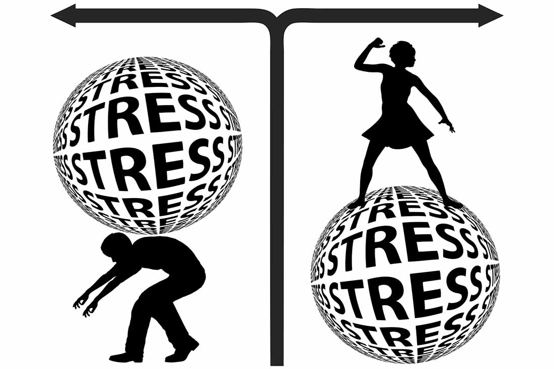 Stress and the fight or flight response.