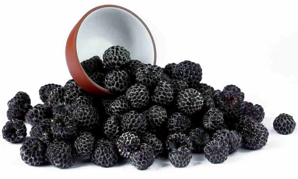 Picture of black raspberries.