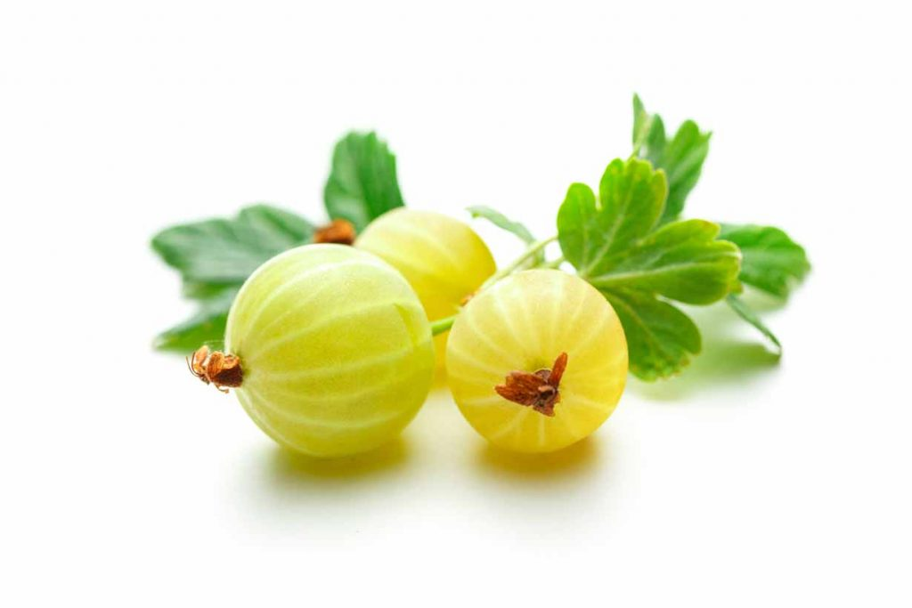 Picture of some fresh green gooseberries.