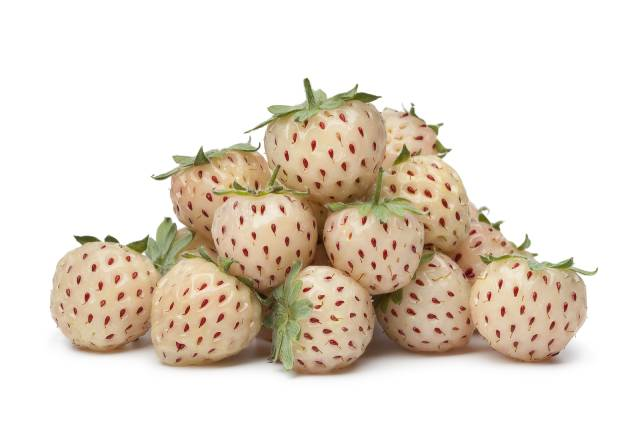 A Pile of Pineberries.