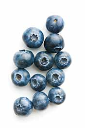 Blueberries On a White Background.