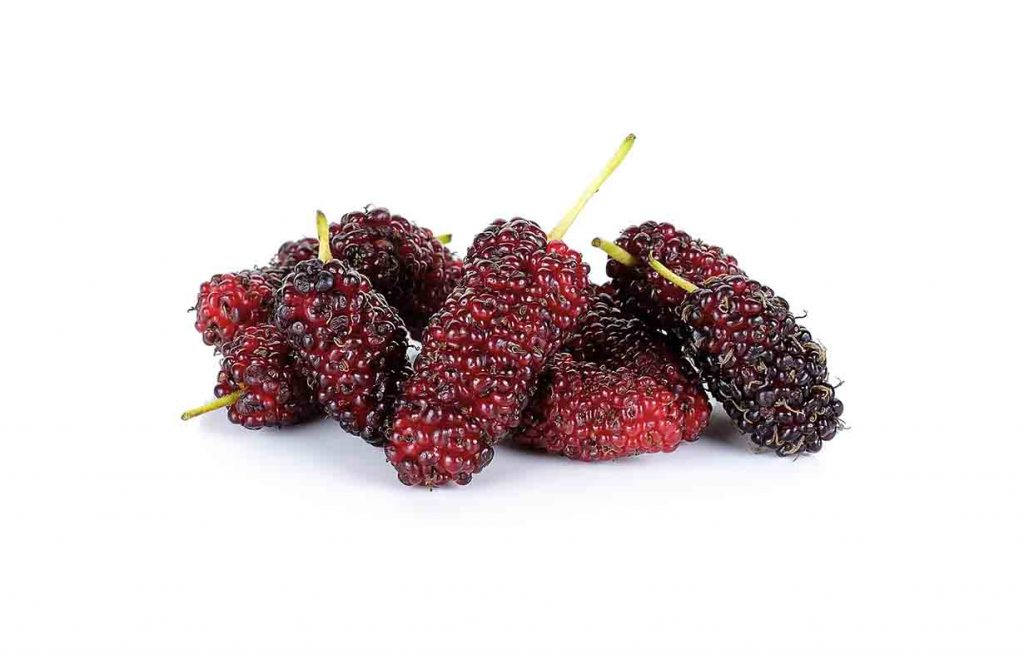 Picture showing red mulberries.