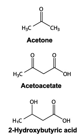 The Structure of Ketone Bodies: Acetone, Acetoacetate and 2-Hydroxybutyric Acid.