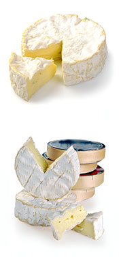 Picture of Camembert Cheese and Packaging.