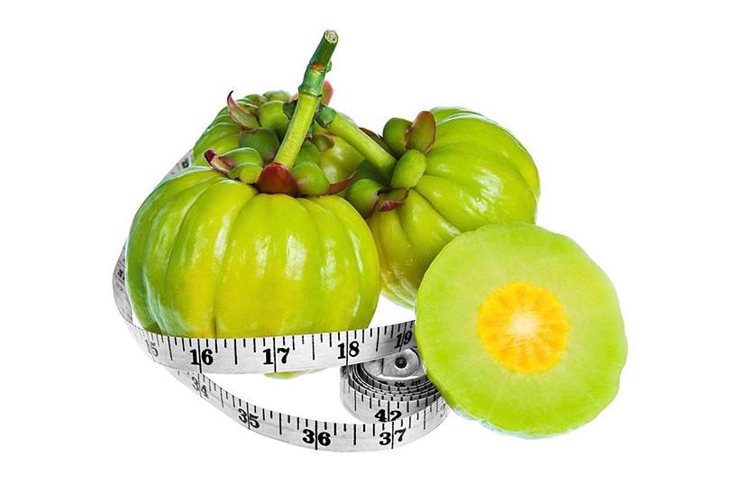 Picture of Garcinia Cambogia Fruit.