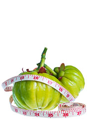 Picture of Garcinia Cambogia Fruit