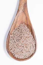 Psyllium Husk Seed Powder On a Wooden Spoon.
