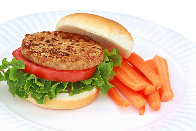 A Picture of a Processed Vegan Burger.
