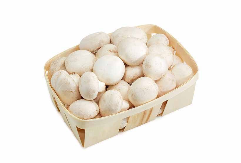 A Punnet of White Button Mushrooms.