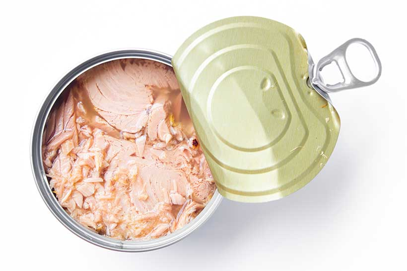 Can of Tuna With Lid Pulled Back and Tuna Chunks Showing.