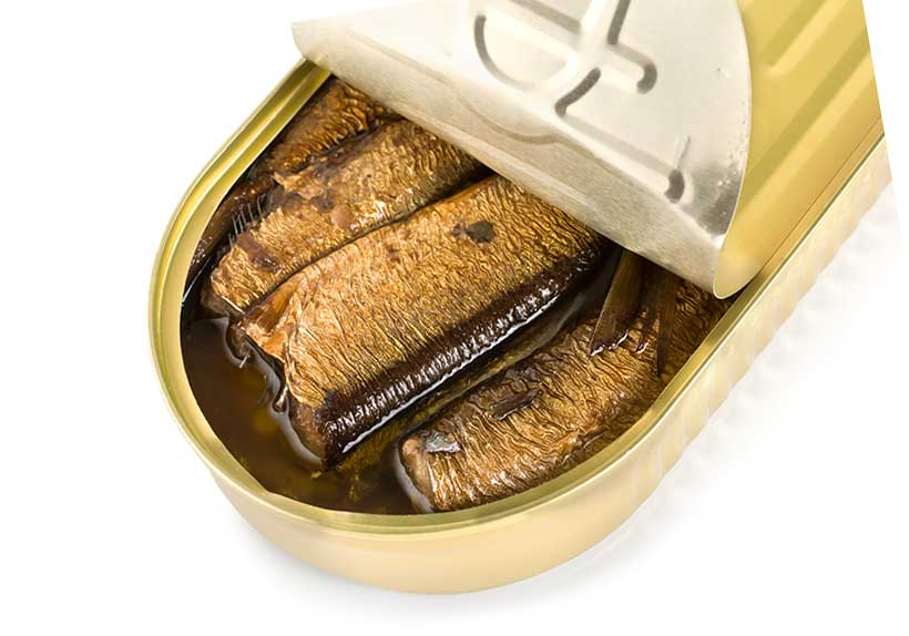 Sardines Are High in Fat and Very Nutrient-Dense.