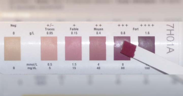 Picture of a Color Chart on a Ketone Strips Container.