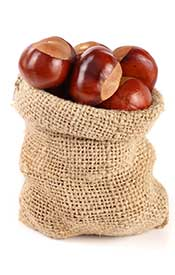 Bag of Chestnuts Ready For Roasting.