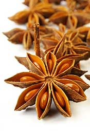 Picture of Star Anise Seeds in Their Flower.