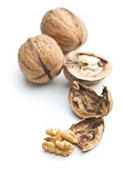 Shelled and Open Walnuts.