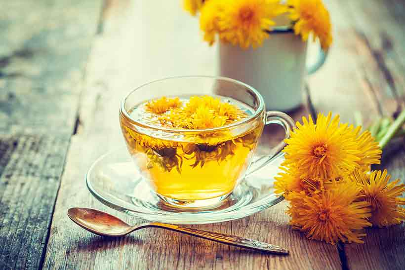 Picture of Dandelion Tea in a Glass Cup With Dandelion Flowers.