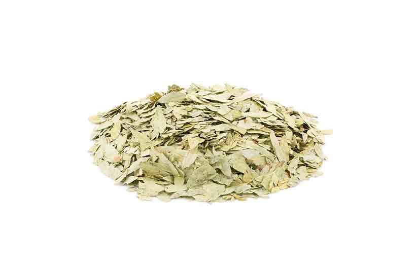 Dried Senna Tea Leaves.