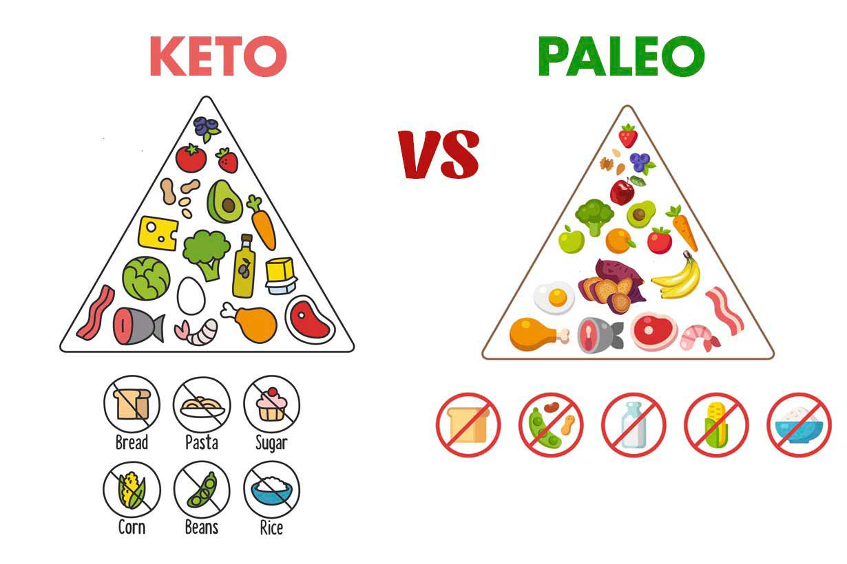 What's The Difference Between Atkins® and Paleo?