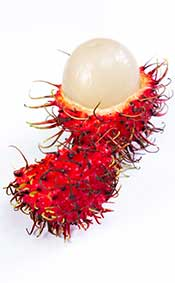 Rambutan Fruit Picture Showing the Creamy Flesh and Spiky Red Skin.