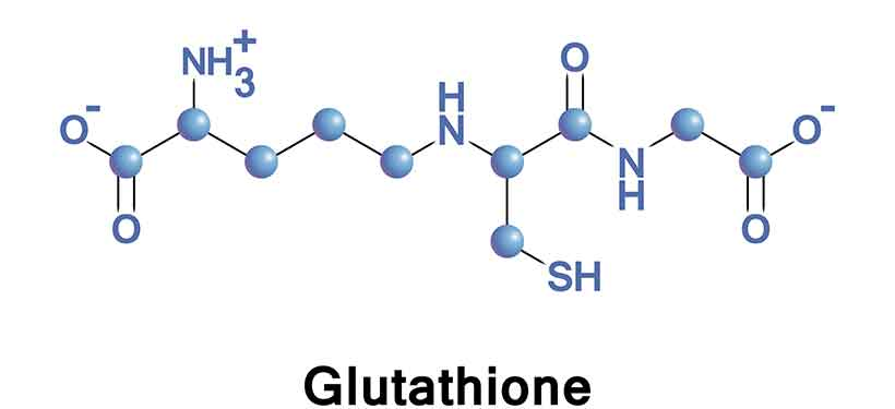 A Diagram Showing the Chemical Formula For Glutathione.