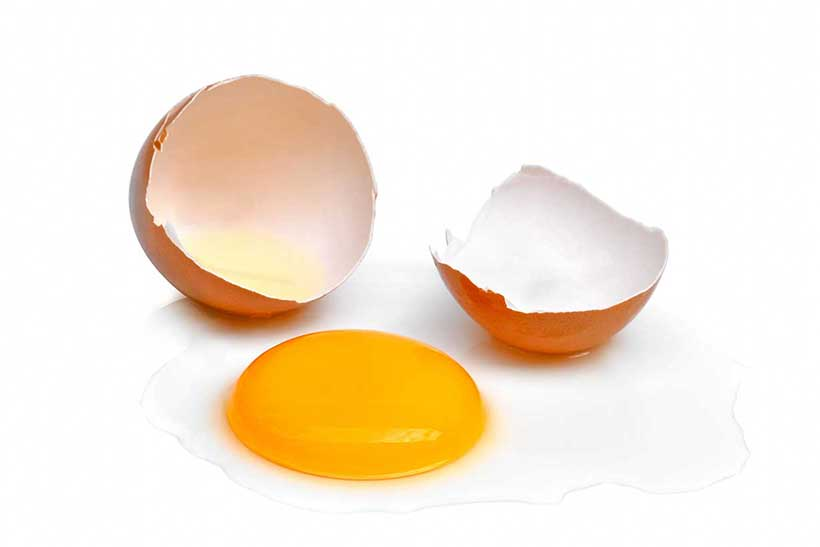 A Cracked Open Egg Shell With a Whole Raw Egg.