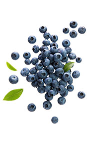 Fresh Blueberries With Green Leaves.