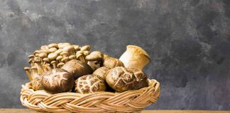 Different Types of Edible Mushrooms In a Basket.