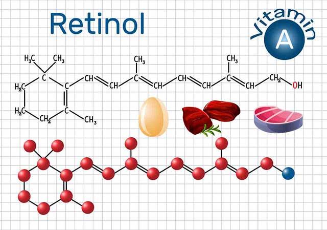 Vitamin A (Retinol): Structure and Foods High In Vitamin A.