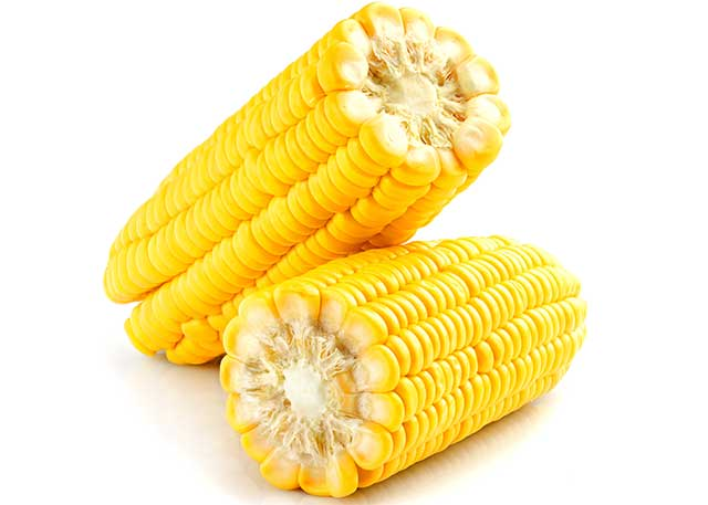 Two Corn on the Cob.