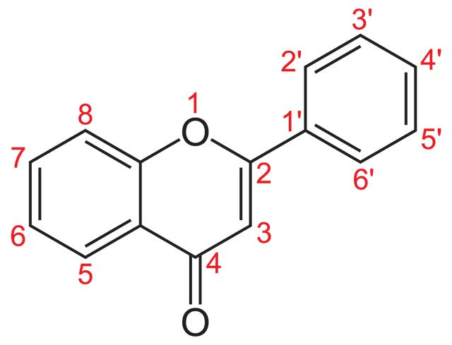 The Structure of a Flavone.