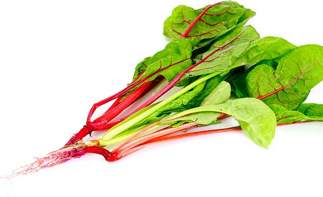 A Bunch of Swiss Chard Leafy Greens.