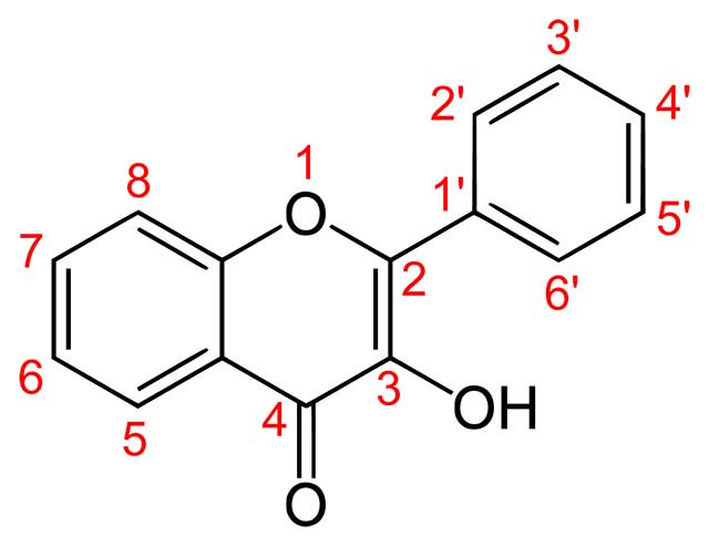 The Structure of Flavonol.