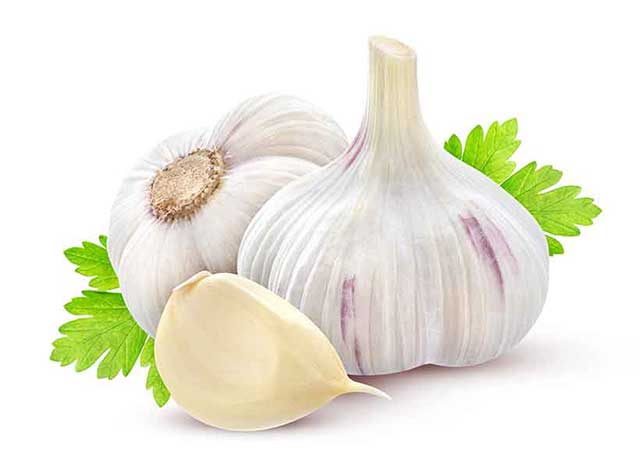 A Whole Garlic Bulb and a Single Clove.