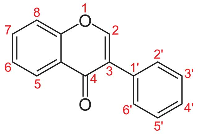 The Structure of Isoflavone.
