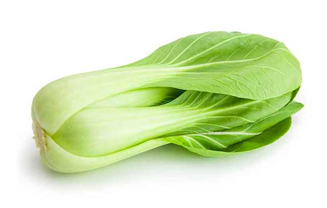 A Large Bok Choy (Chinese Cabbage).