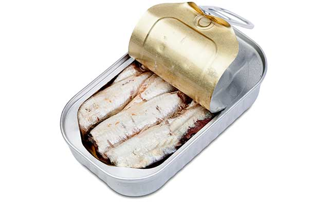An Open Can of Sardines In Brine.