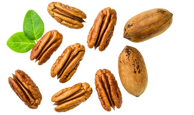 A Group of Shelled and Unshelled Pecans.