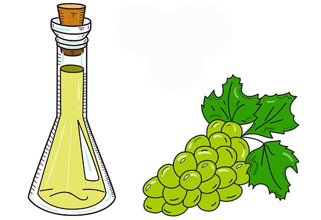 Hand Drawn Grape Seed Oil Bottle Next To Green Grapes.