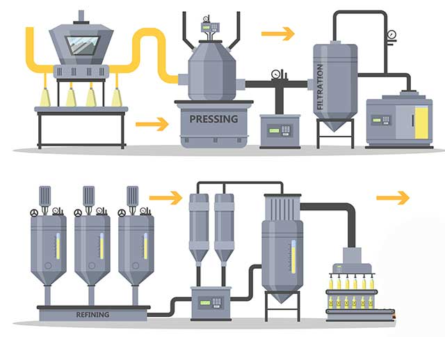 Illustration Showing the Production Process of Grapeseed Oil.