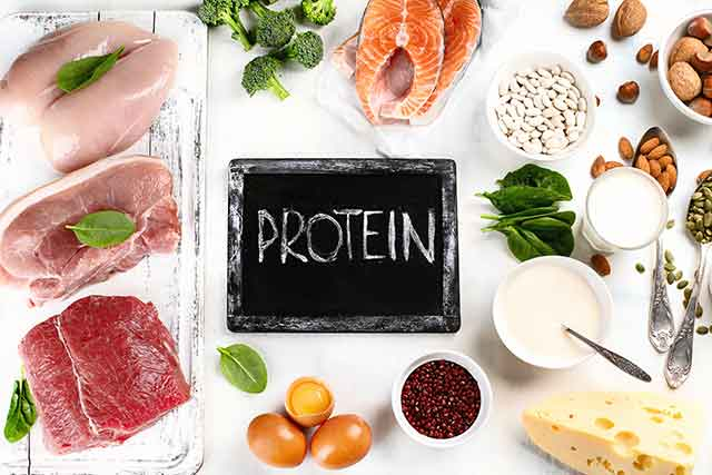 A Variety of Foods High In Protein.