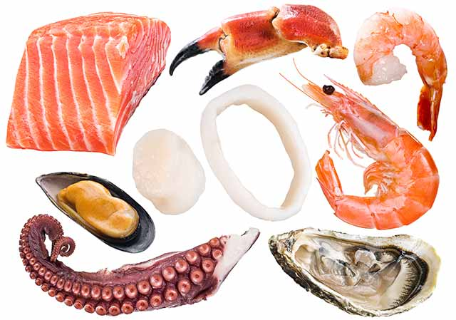Various Different Fish and Shellfish.