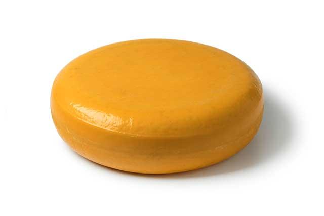 Dutch Gouda Cheese On a White Background.