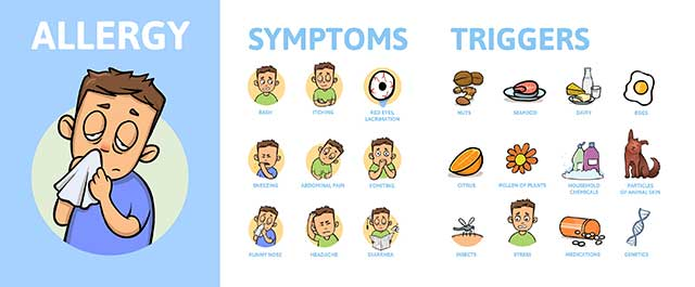 Infographic Showing the Symptoms and Triggers of Common Allergies.