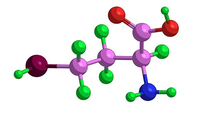 Illustration Showing the Molecular Structure of Homocysteine.