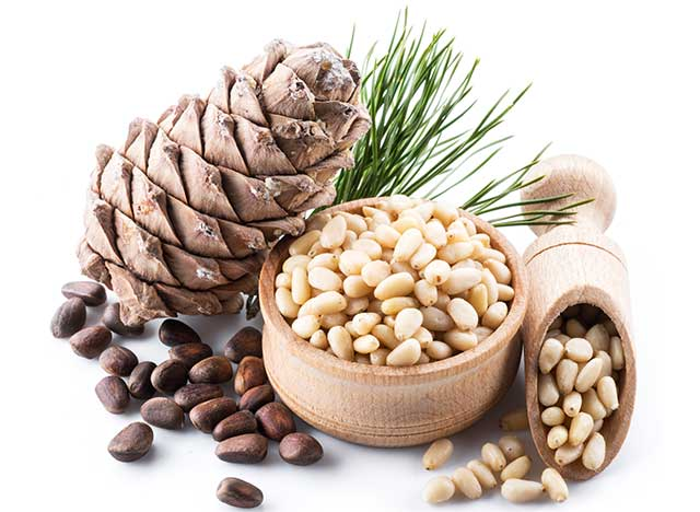 Shelled and Unshelled Pine Nuts and a Pine Cone.