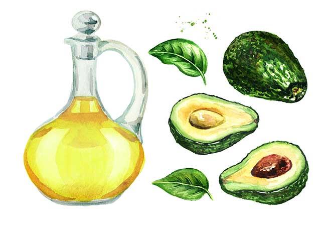 Illustration of Avocado Oil Alongside Avocado Fruit Halves.