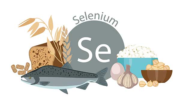 Ricotta Cheese and Several Other Foods Rich In Selenium.